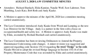 Icon of Law Committee Minutes 2020-08-03